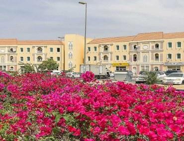 عقارات المدينة العالمية دبي