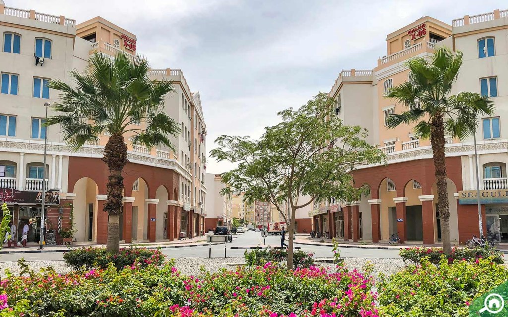 View of apartments for rent in International City Dubai England Cluster