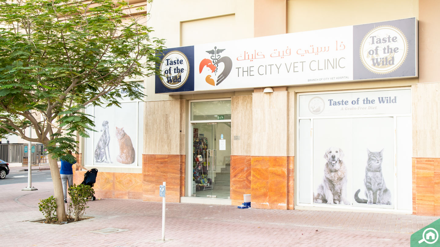 View of The City Vet Clinic in Jumeirah Village Triangle