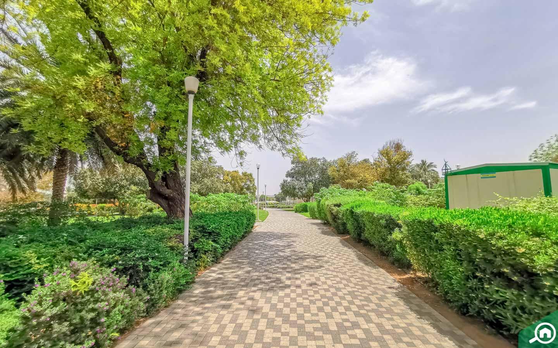 Al Jahli Park jogging track