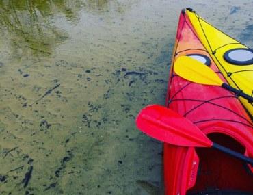 kayaking areas in Dubai