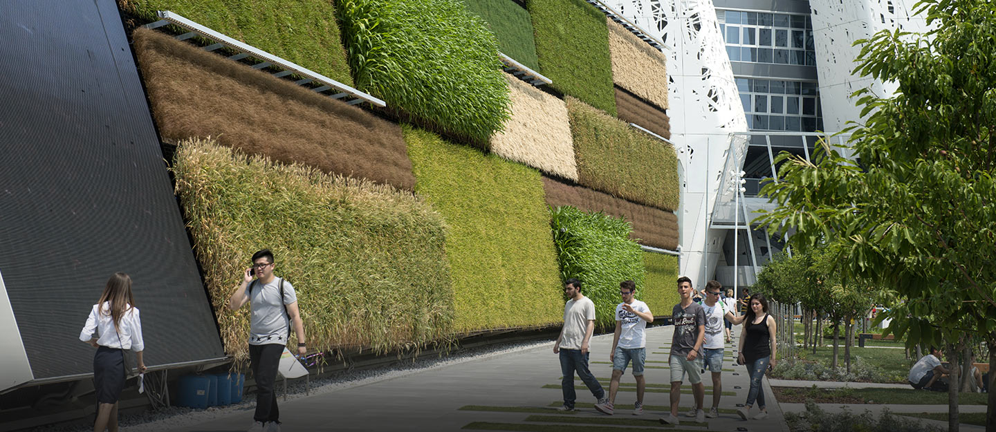 Building With Green Walls