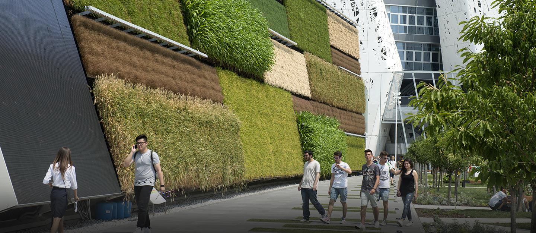 مباني تتزين بالجدران الخضراء
