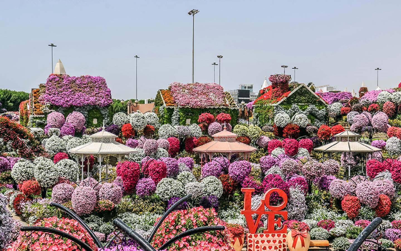 Lost Paradise at the Dubai Miracle Garden