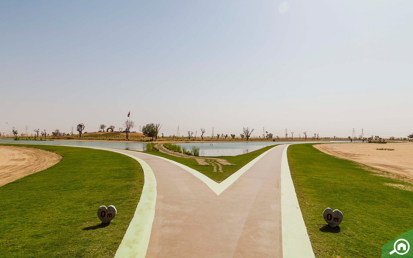 Top 5 Things To Do At Al Qudra: Love Lake, Wildlife & More ...