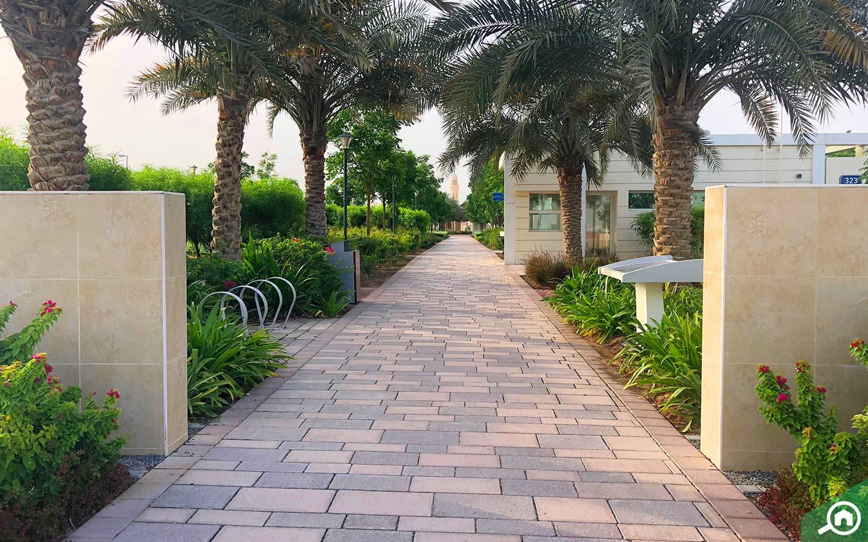 View of Mohammed Bin Zayed City public park