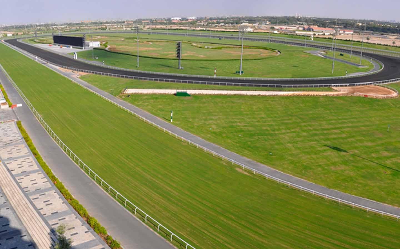 View of Meydan Racecourse
