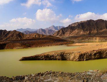Natural reserve at Wadi Wurayah Fujairah