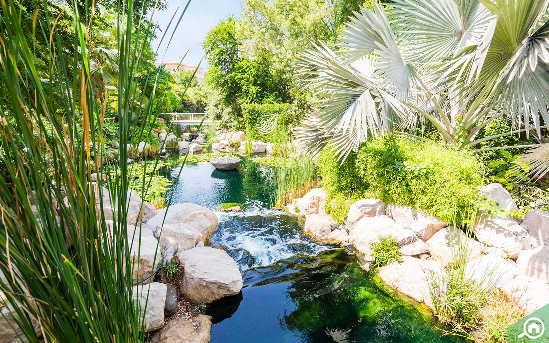 Waterways and greenery in Al Barari