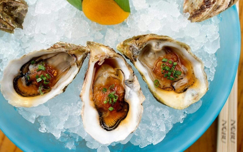 Sea oysters served at Nobu Atlantis Dubai