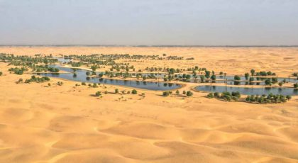 Oases in the UAE