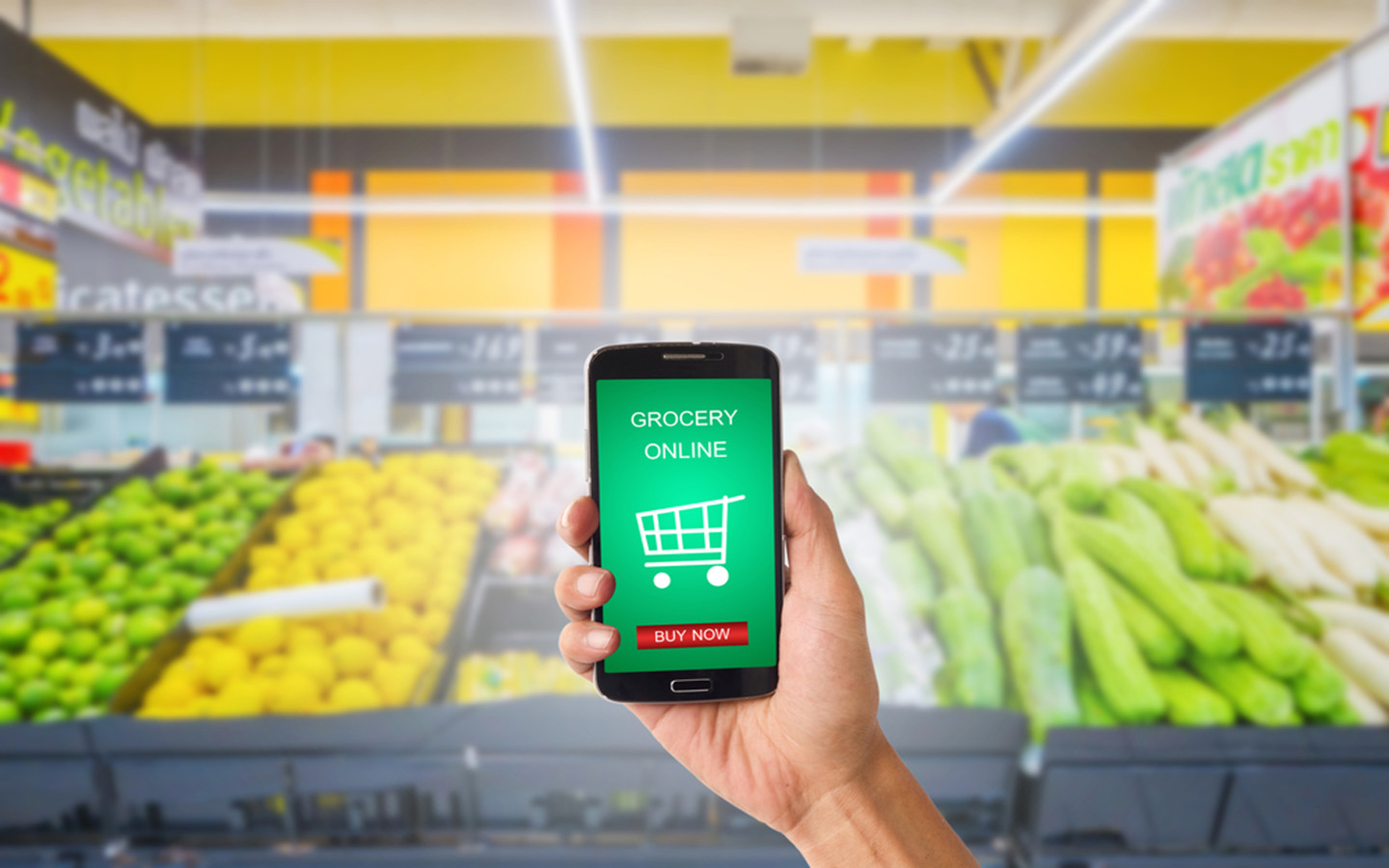online grocery shopping in Abu Dhabi