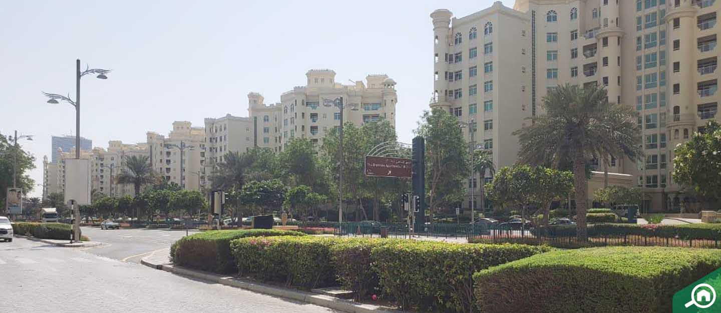 residential area in palm jumeirah