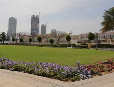 احد المساحات الخضراء في منطقة البرشاء في دبي