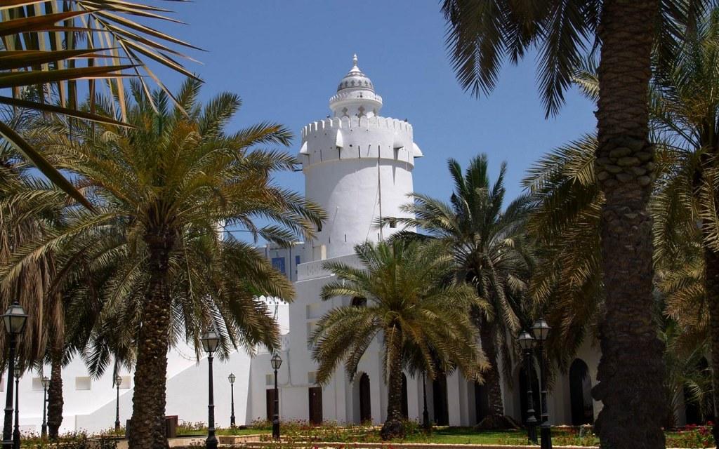 Date Palm trees at Qasr ul Hosn