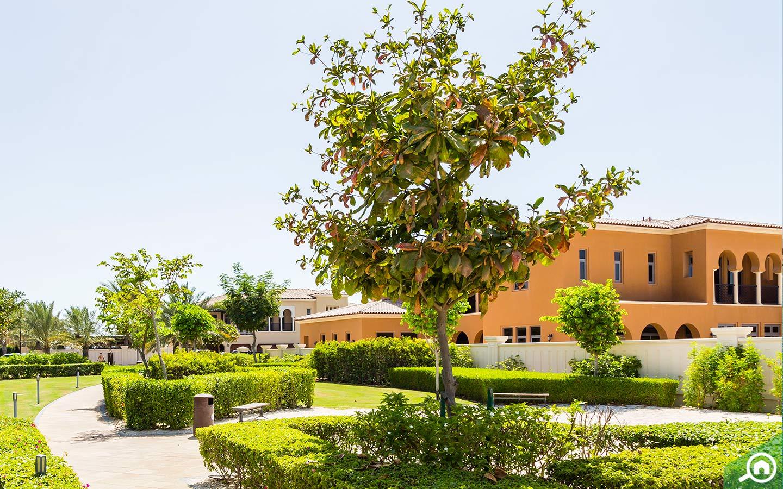 Greenery and villas on islands of Abu Dhabi