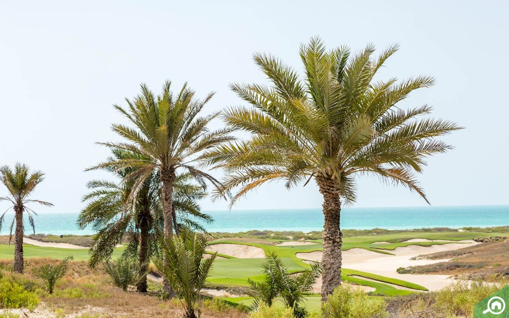 View of beach and golf course in Saadiyat Island