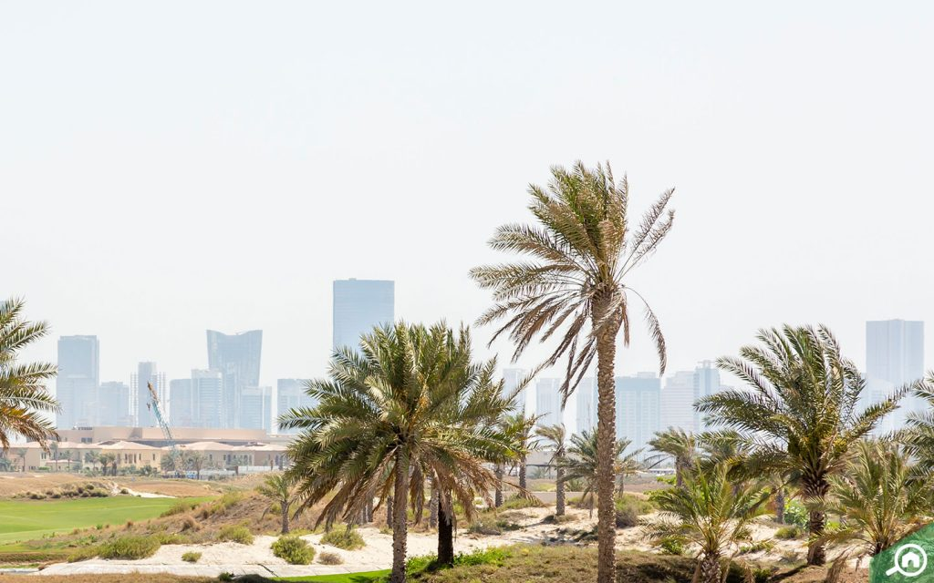 View of construction cranes on Saadiyat Island in the distance