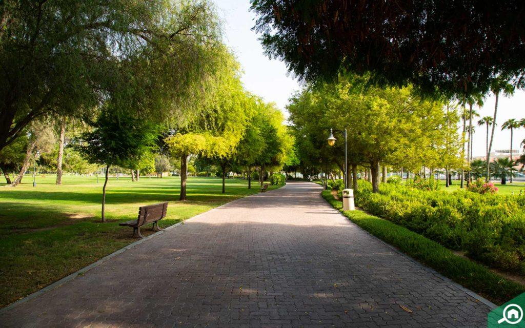 View of Safa Park