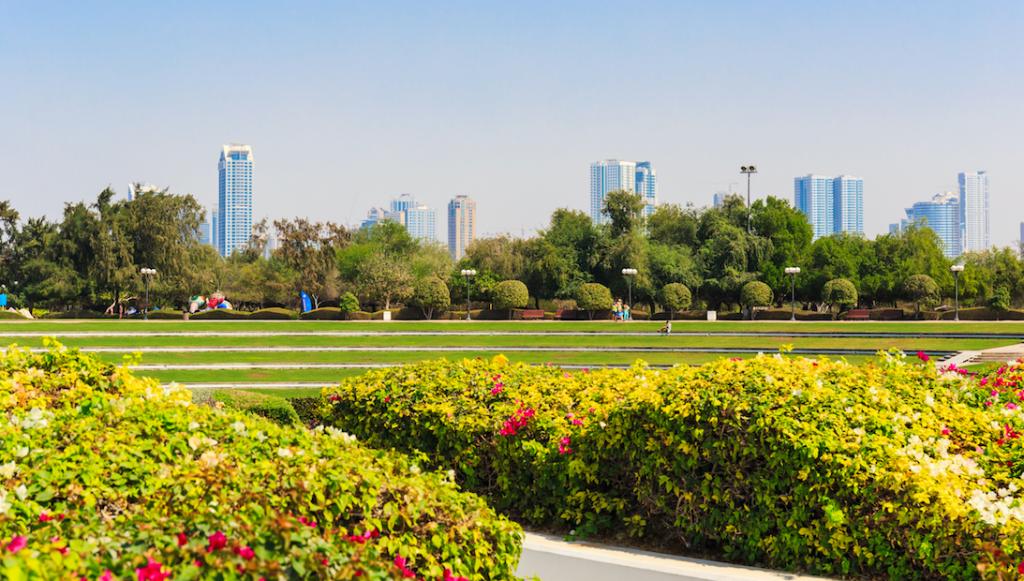 the jumeirah beach park