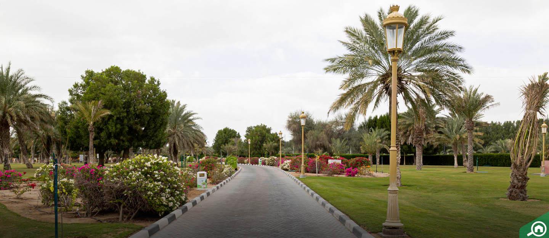 Sharjah National Park: Timings, Tickets & more - MyBayut