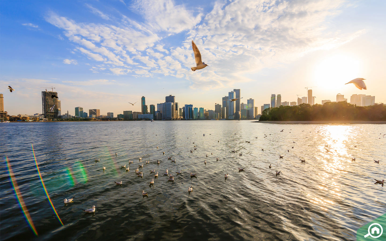 Sharjah Skyline
