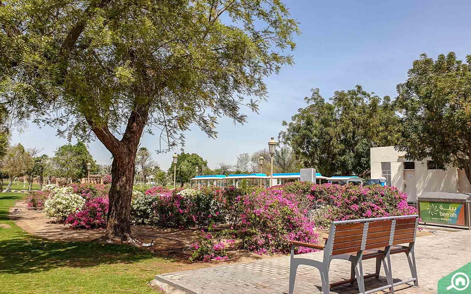 Sharjah Park