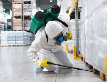 Pest Control Companies In Sharjah