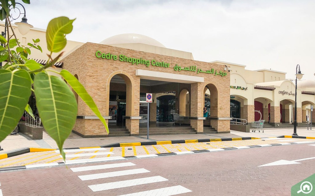 Supermarkets - benefits of living in Dubai Silicon Oasis