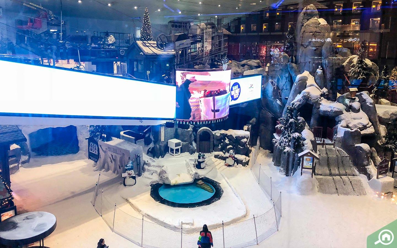 صالة تزلج سكي دبي الداخلية