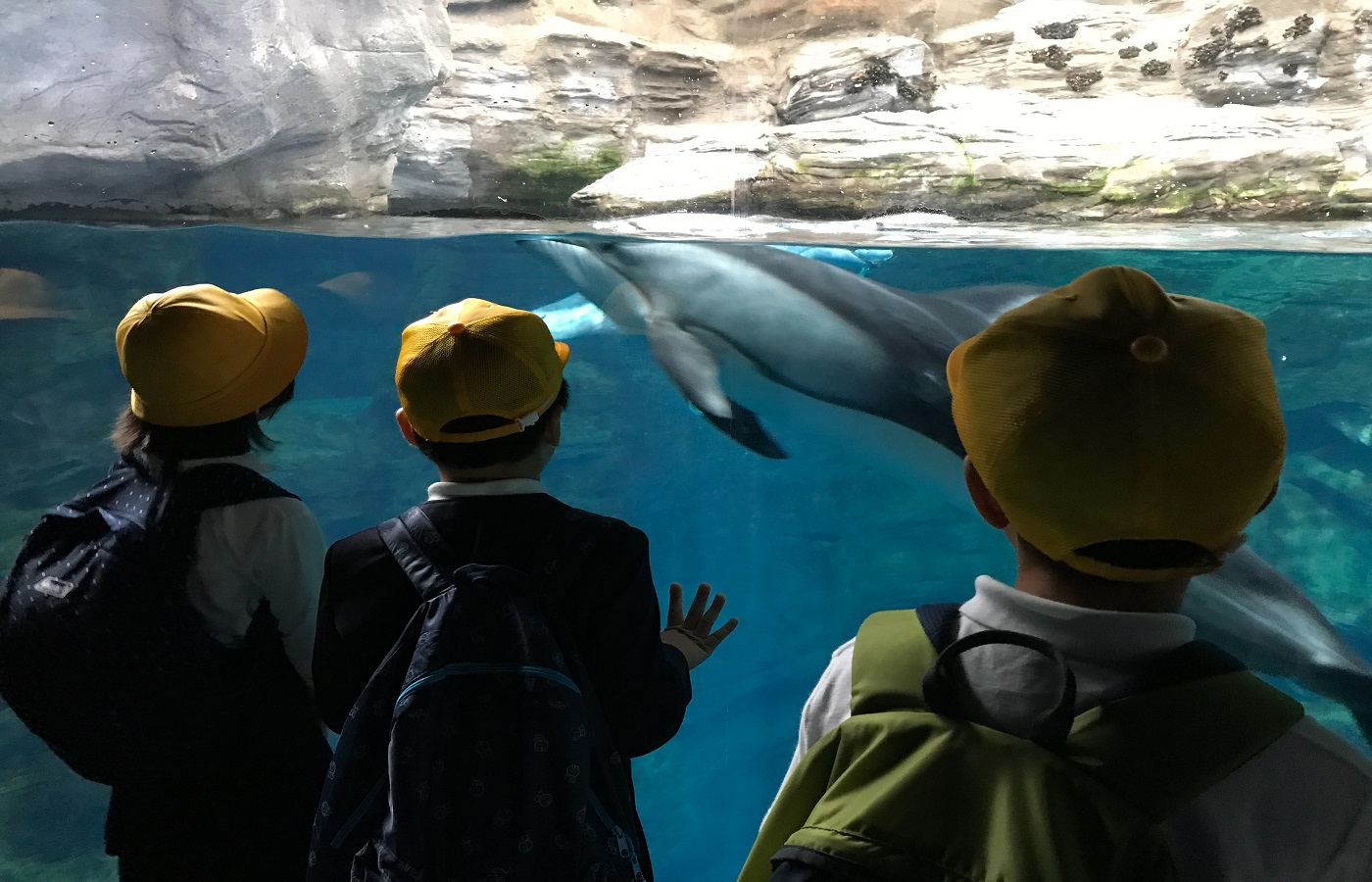 School kids at the Lost Chambers Aquarium Dubai