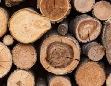 الخشب