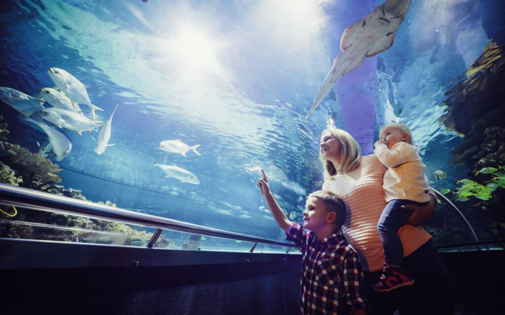 Mother with kids at an aquarium