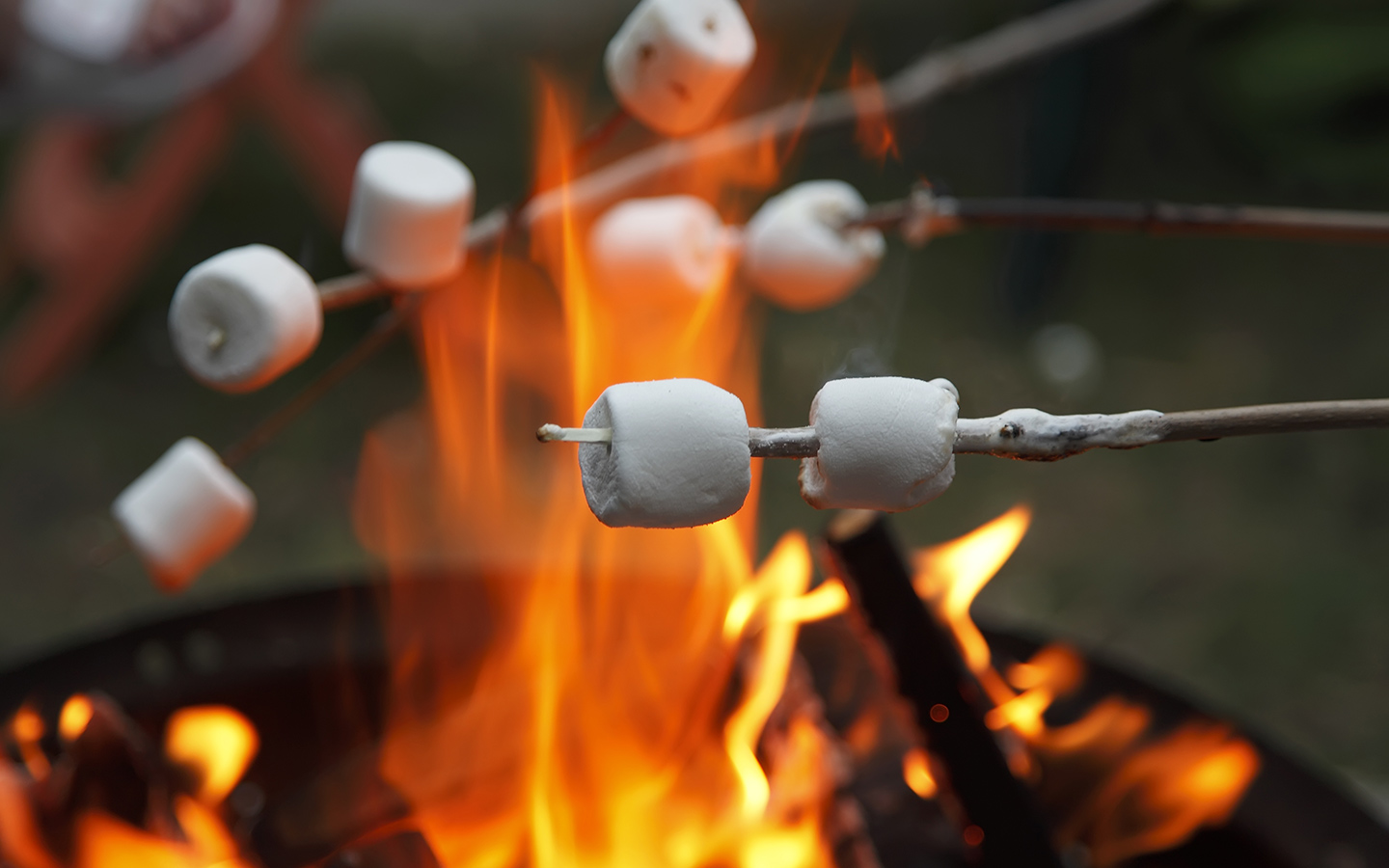 marshamallows cooked on a camp fire