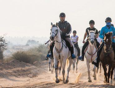 سباقات الخيول في الامارات