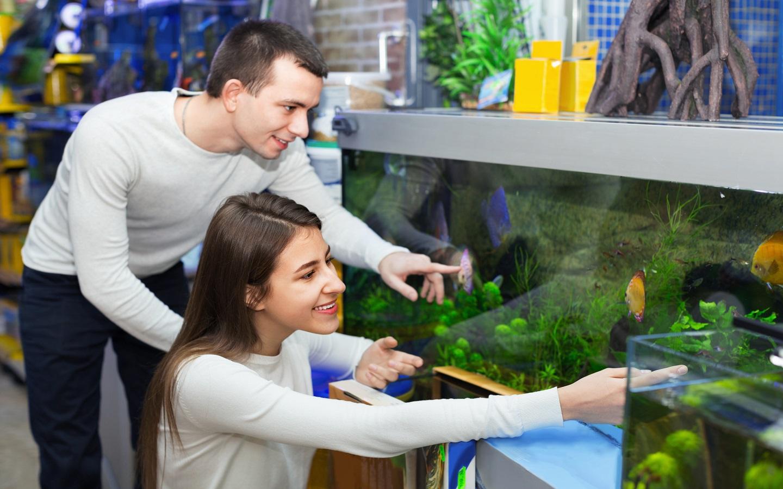 couple in aquarium shop