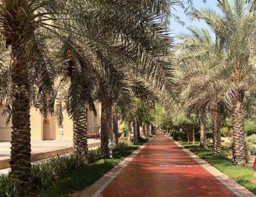 Running track at Al Ittihad Park