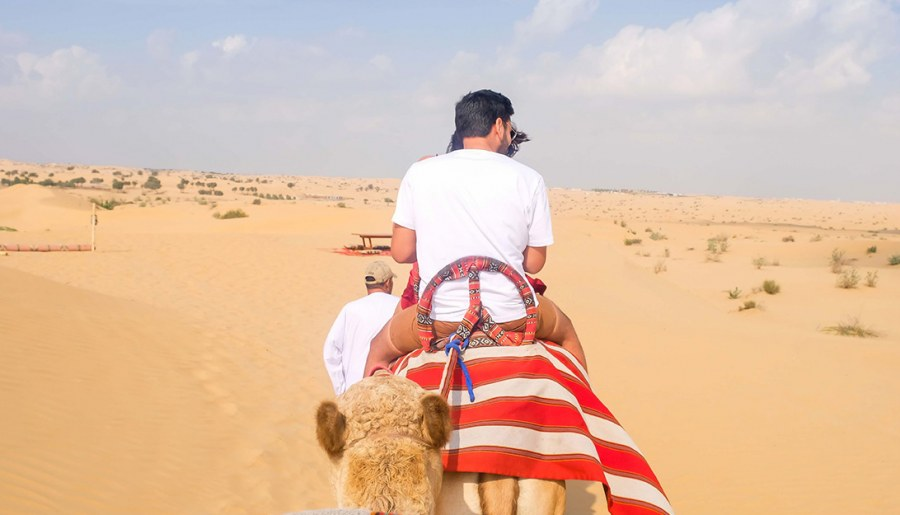 Here is where you can have the best desert safari experience in Dubai!