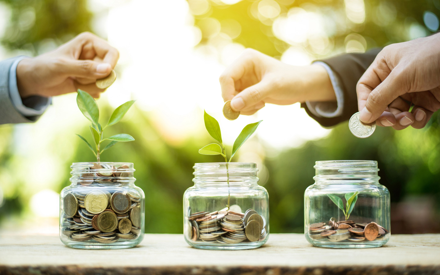 crowdfunding in the UAE