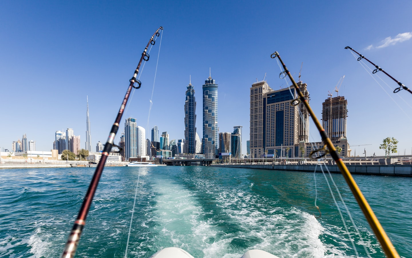 Where to go fishing in Dubai   The Vacation Builder