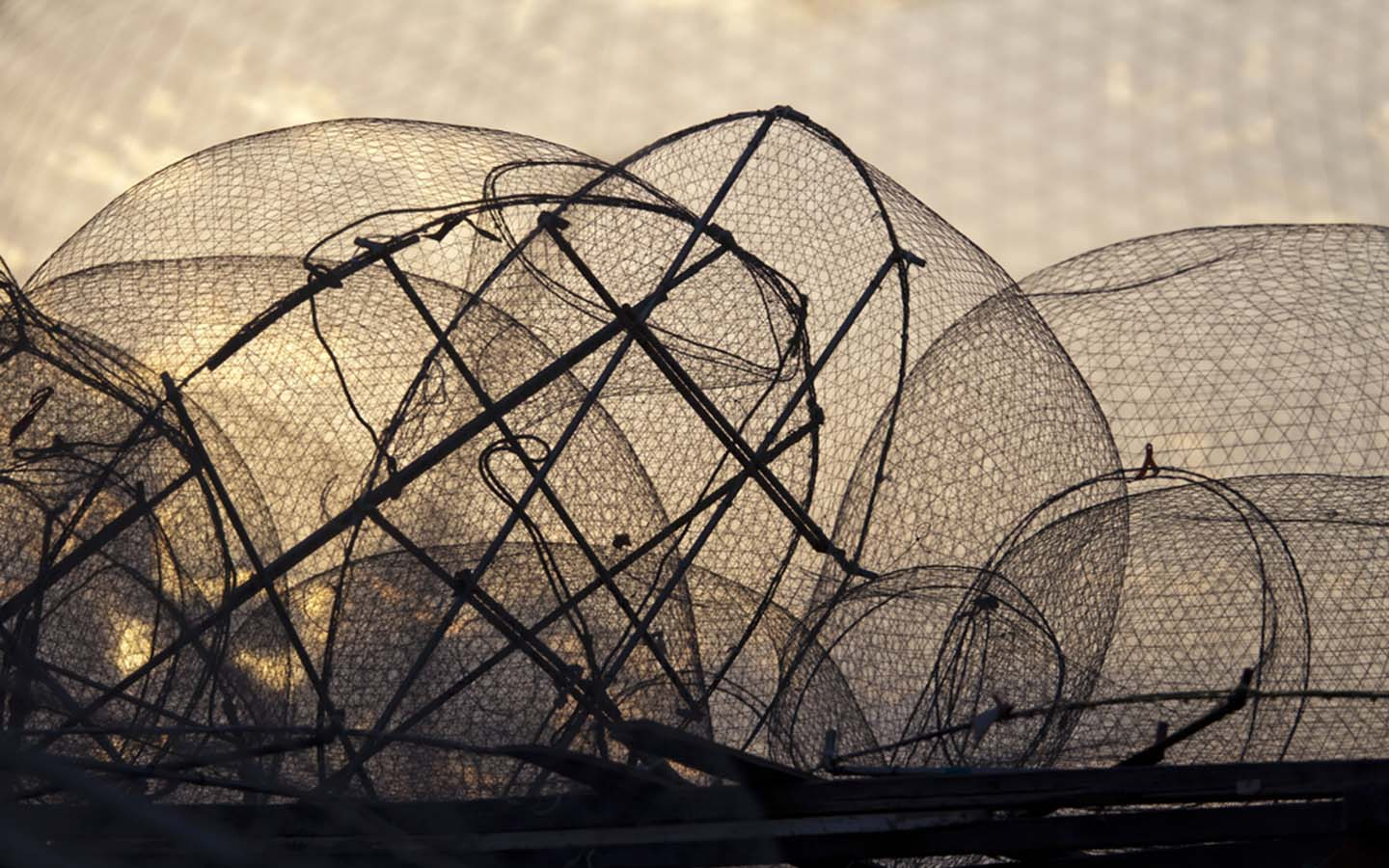 A couple of fish nets intertwined with each other
