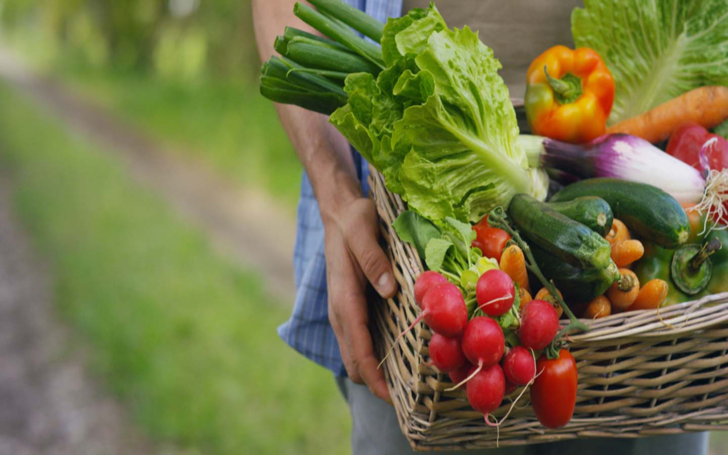 A basket full of fruits and vegetables