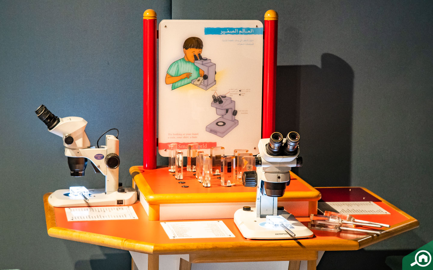 Fully functional microscopes at the Sharjah Science Museum
