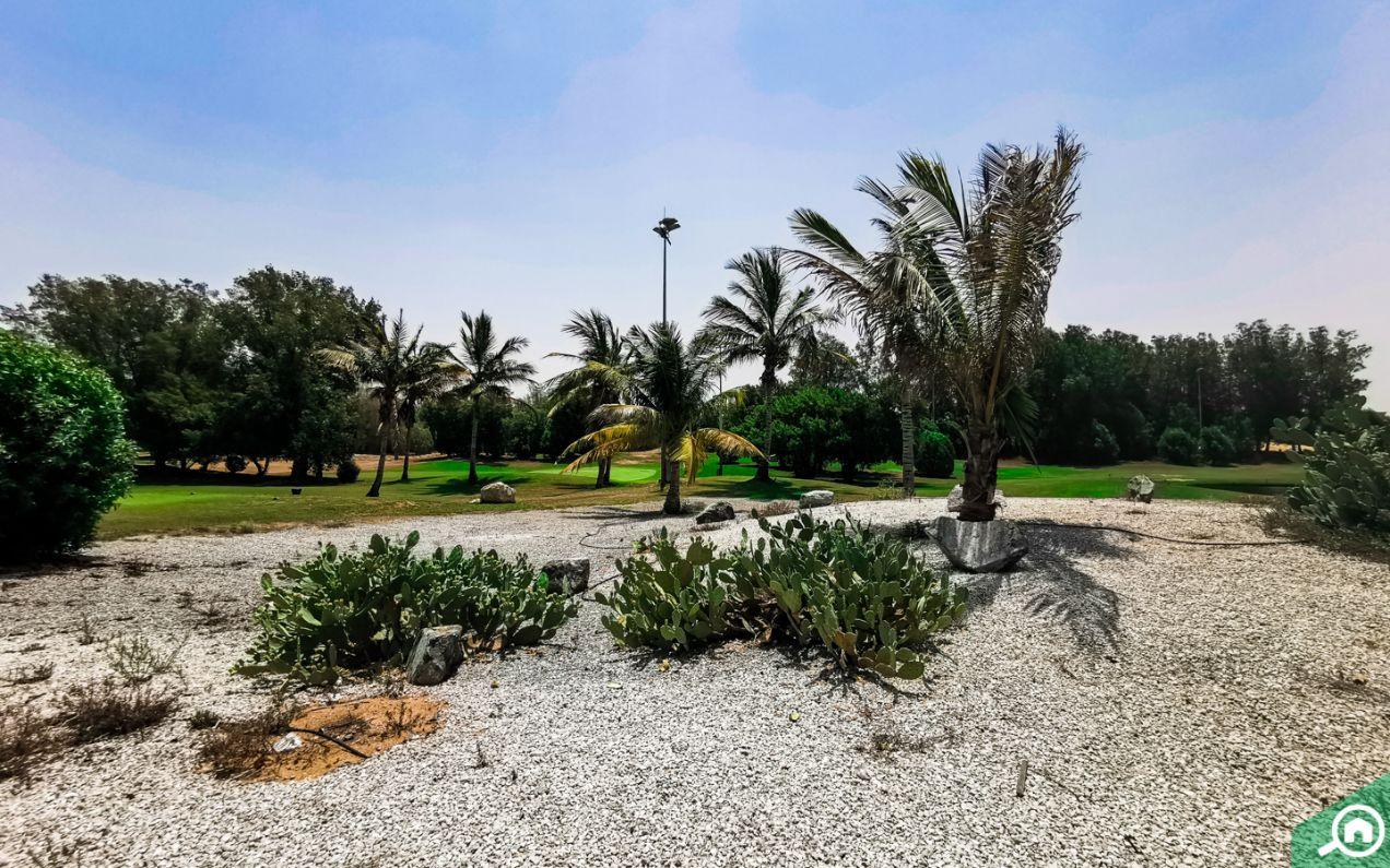 أشجار ومساحات خضراء في قرية الحمراء