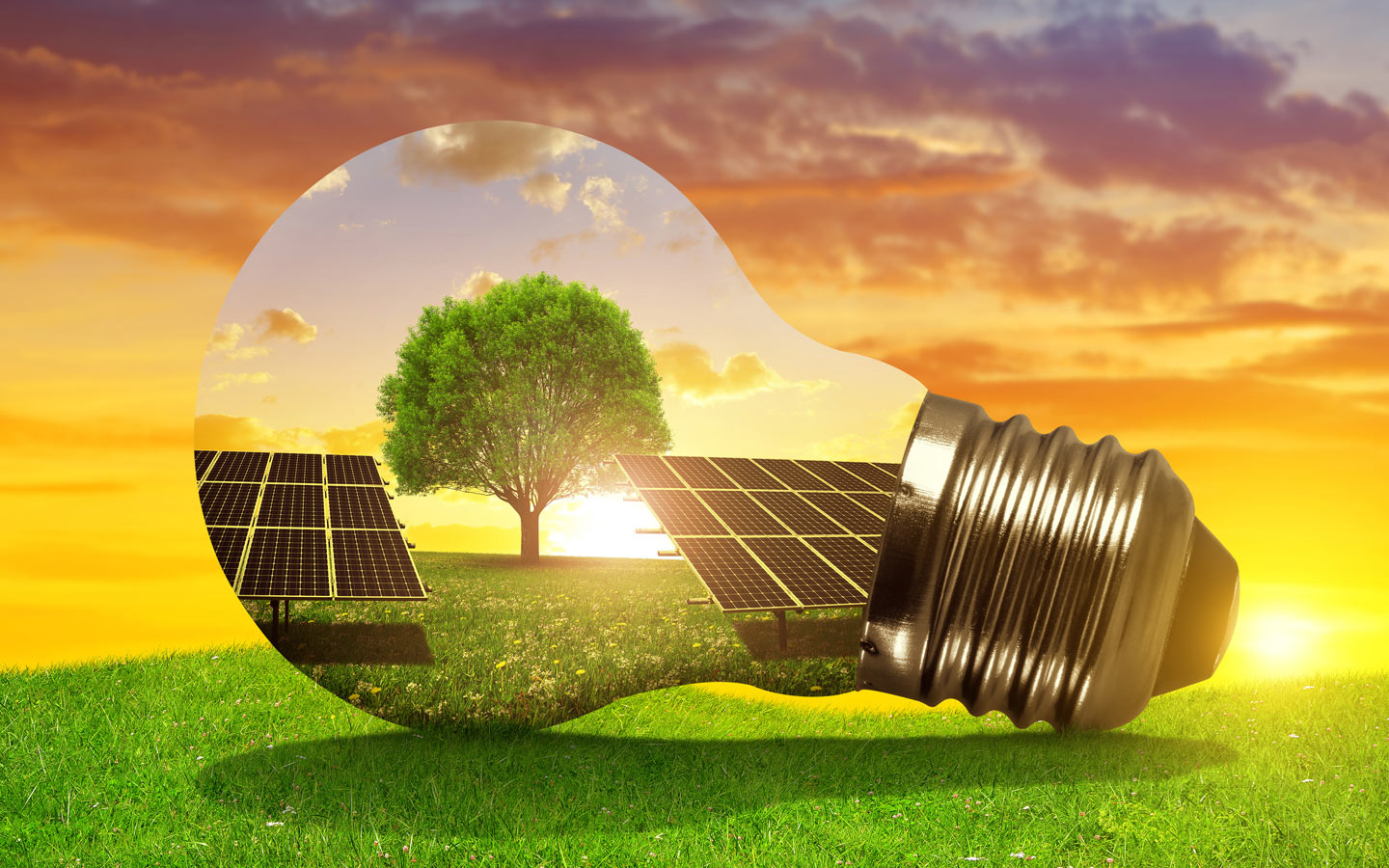 Turning your home solar is going to help a long with going green and saving the environment. The use of solar energy has greater implication than just the cost saving on DEWA bills