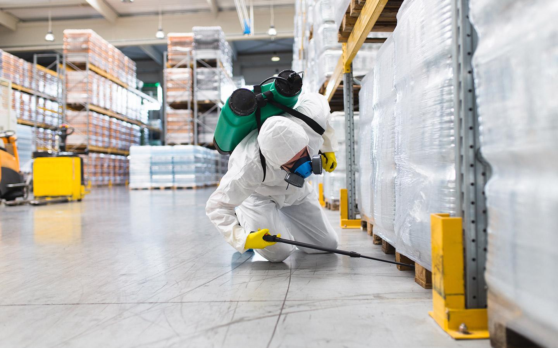 Industrial pest control services in Dubai