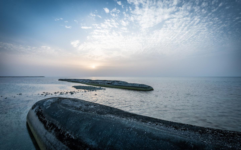 Sir Bani Yas Island in Abu Dhabi
