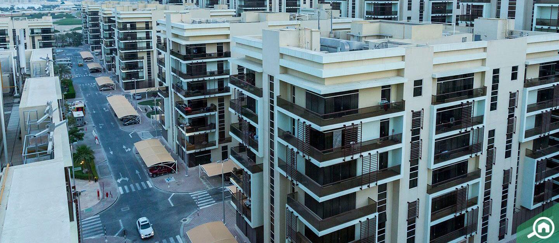 Apartment buildings in Khalifa City A
