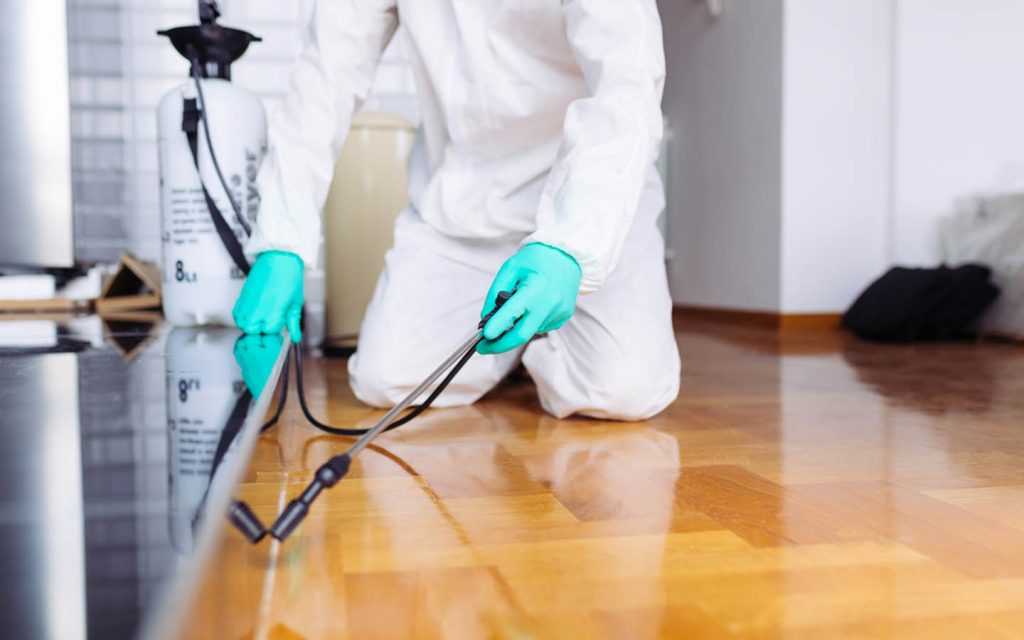 man spraying insecticide under appliances