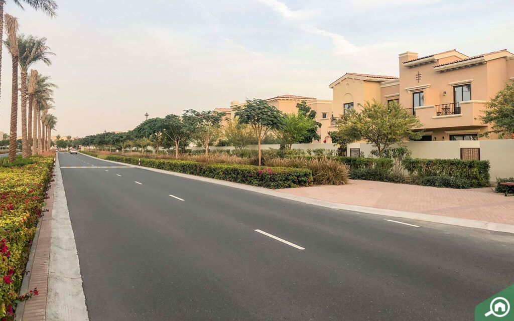 Mira street view